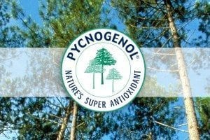 Look, Feel and Live Better with Pycnogenol, Nature's Super Antioxidant