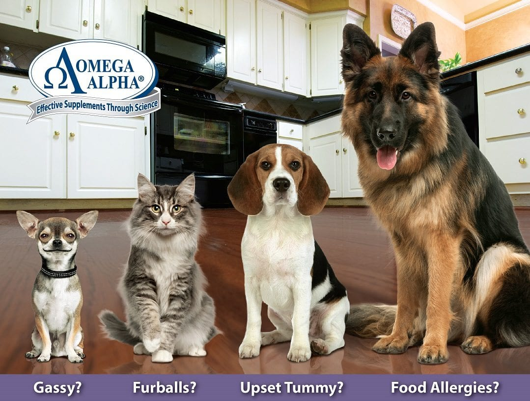 "Free Pet Health Seminar – ""Prevent Disease Naturally!"""