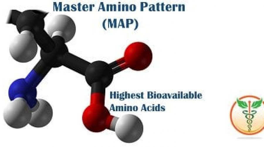 Boost Your Protein Intake and Absorption with MAP (Master Amino
