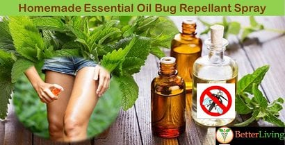 Enjoy A Bite Free Summer with our Homemade Essential Oil Bug Repellant Spray