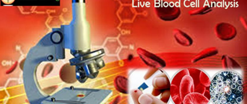 Live and dry blood analysis - Book of positions