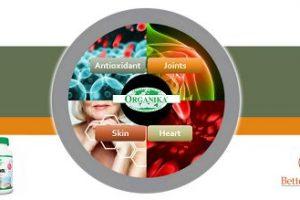 Organika Pycnogenol – Look, Feel and Live Better