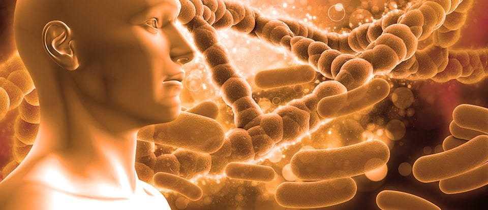 Metagenics Ultra Flora – The Right Probiotic Supplements | Better Living