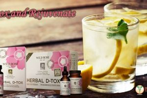 Boost Energy and Immunity with Wild Rose Herbal D-Tox