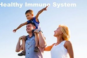 Best Support for Your Immune System