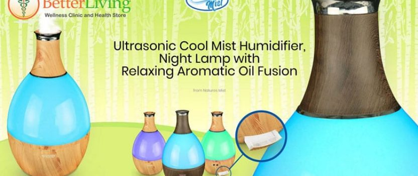 Find Relief From Dry Winter Air With a Humidifier