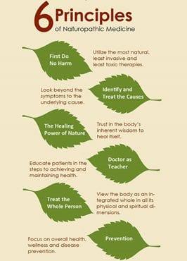 6 Principles of Naturopathic Medicine