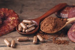 how medicinal mushrooms support immune system