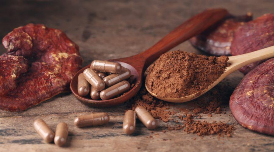 6 Benefits of Medicinal Mushrooms